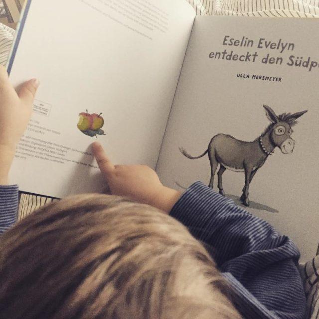 Lesetipp frs Wochenende Eselin Evelyn entdeckt den Sdpol  Wirhellip