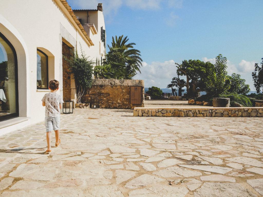 Emil beim entdecken im Carrossa